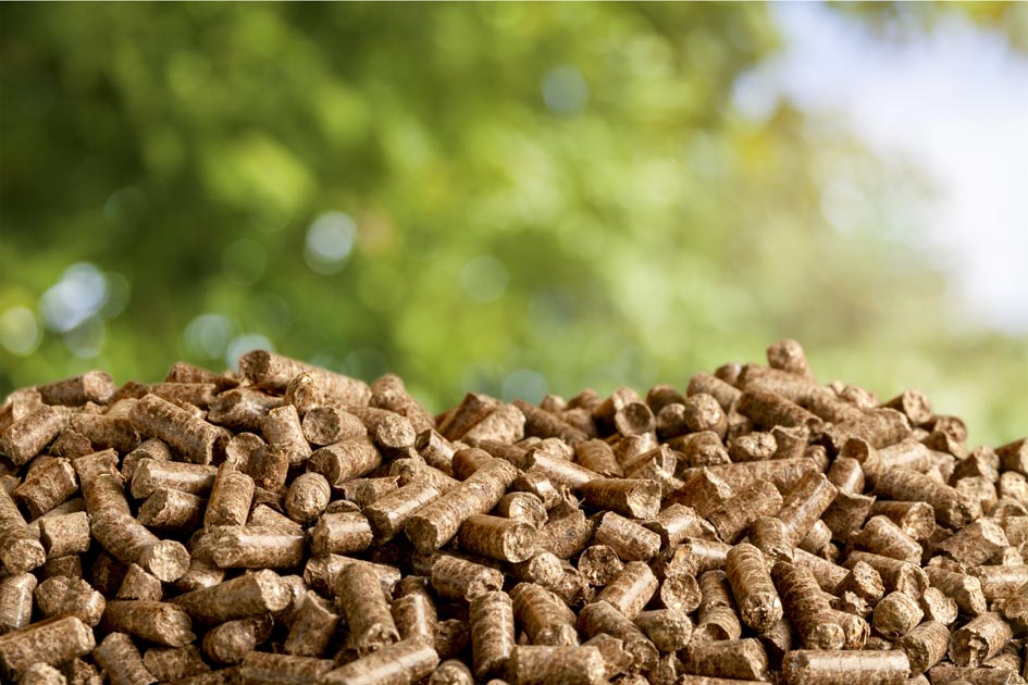 The Benefits of Biomass