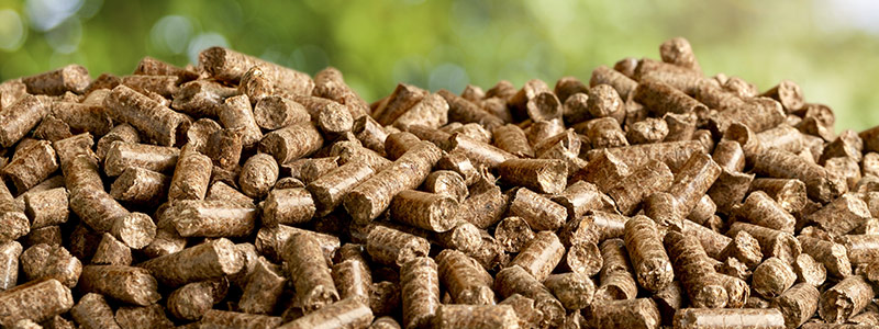 What Is Biomass Pellets